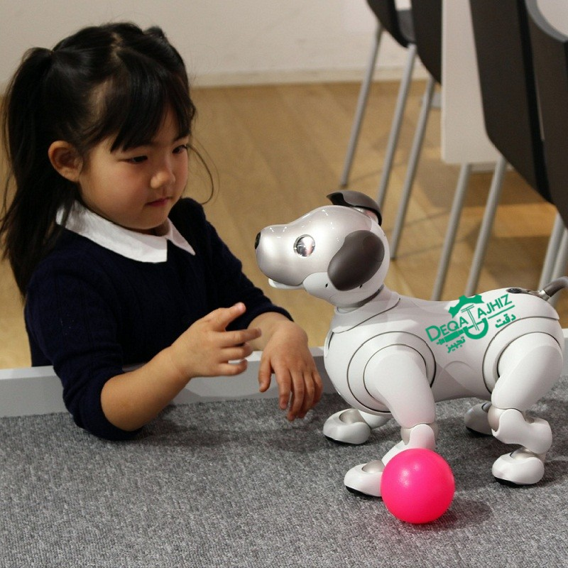 انسان و ربات